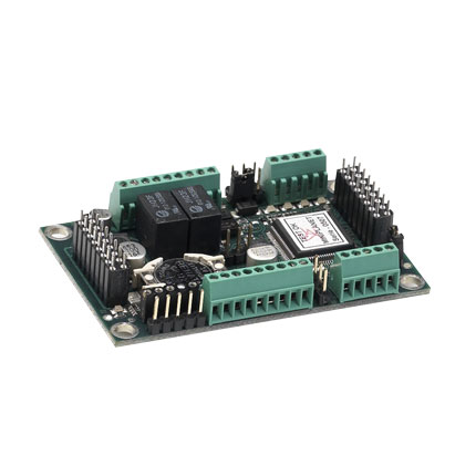 Microprocessor-circuit